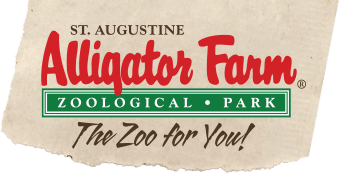 Alligator Farm Coupons