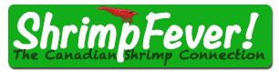 Shrimp Fever Coupons